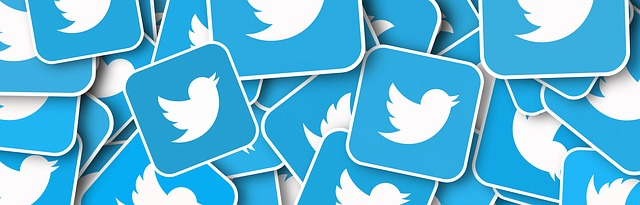 what is twitter logo